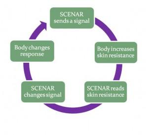 SCENAR (SKENAR) Biofeedback mechanism